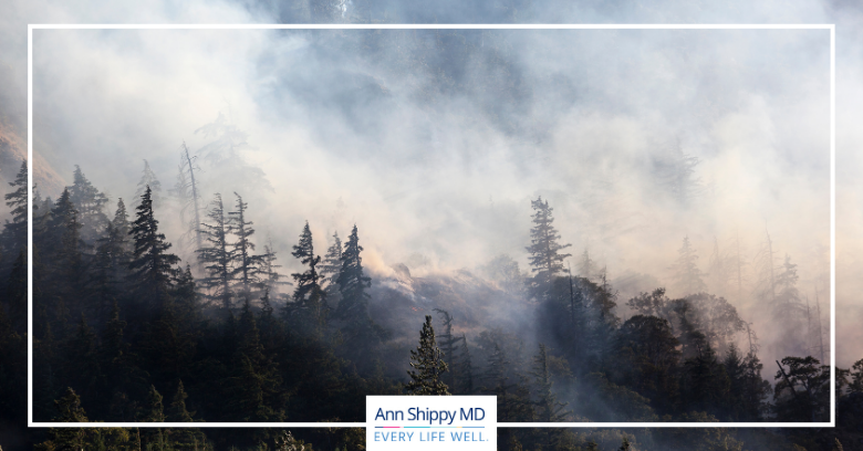 Air Quality Index – Forest Fires and Particulate Matter